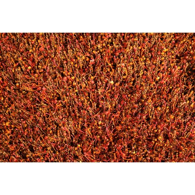 Shepperson Hand-Tufted Orange/Red Area Rug Rug Size: Rectangle 76 x 96