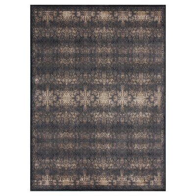 Mystique Expresso/Black Area Rug