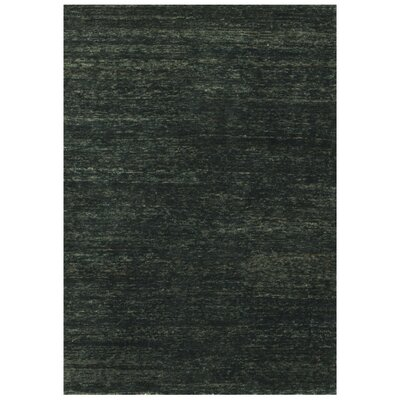 Intrigue Hand-Knotted Ebony Area Rug Rug Size: 79 x 99