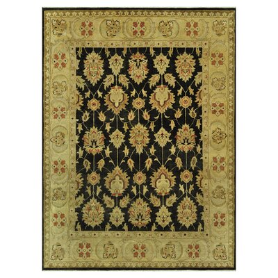 Vernon Hand-Knotted Black/Gold Area Rug Rug Size: 96 x 136