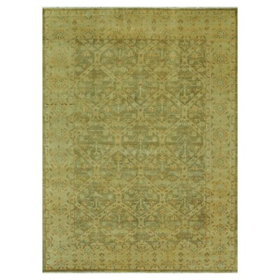 Kirtley Hand Knotted Wool Moss Area Rug Rug Size: Rectangle 2 x 3
