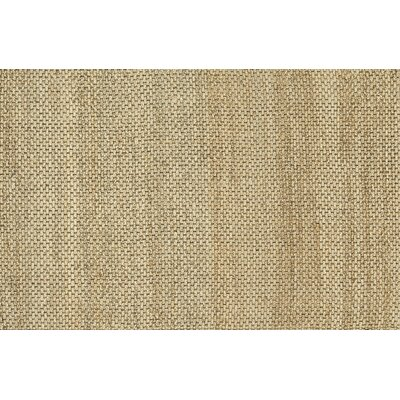 Eco Hand-Woven Beige Area Rug Rug Size: Rectangle 5 x 76