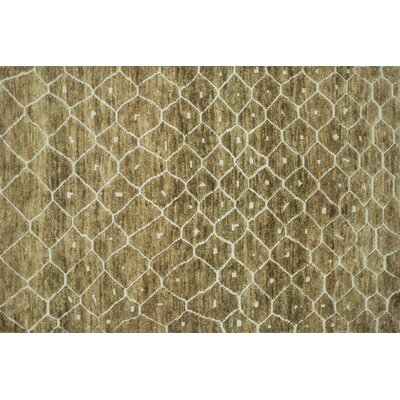 Palumbo Hand-Knotted Elmwood Area Rug Rug Size: Rectangle 56 x 86