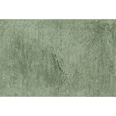 Mason Shag Hand-Tufted Seafoam Green Area Rug Rug Size: Rectangle 36 x 56