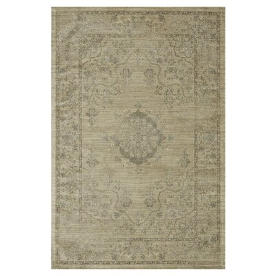 Nyla Beige Area Rug Rug Size: Rectangle 33 x 53