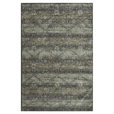 Keever Charcoal Area Rug Rug Size: Rectangle 33 x 53
