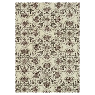 Keiper Brown/Gray Area Rug Rug Size: Rectangle 76 x 96