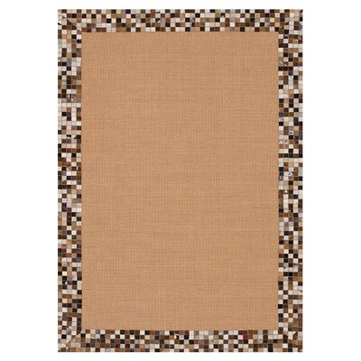 Timboroa Hand Woven Brown Area Rug Rug Size: Rectangle 5 x 76
