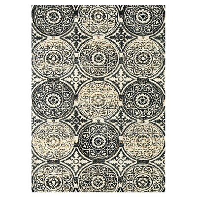 Keiper Black/Beige Area Rug Rug Size: Rectangle 36 x 56