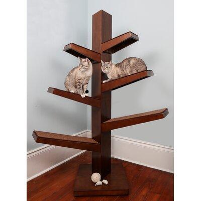 68 Catalpa Cat Tree Color: Mahogany