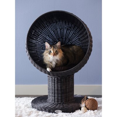Kitty Ball Hooded Cat Bed Color: Espresso