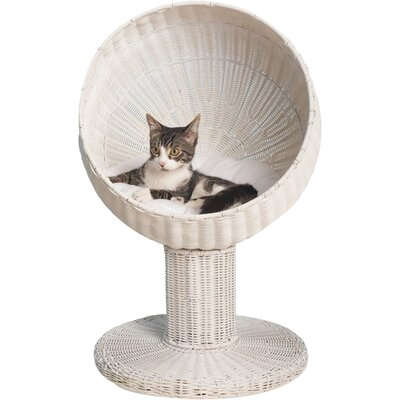Ashleigh Kitty Ball Hooded Cat Bed Color: White