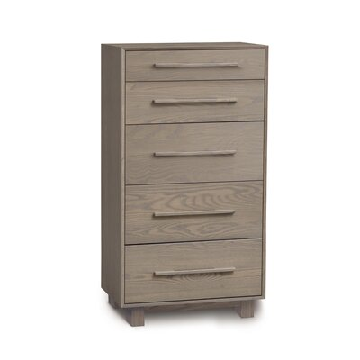 Sloane 5 Drawer Chest Frame Color: Weathered Ash