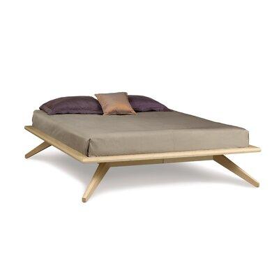Astrid Platform Customizable Bedroom Set