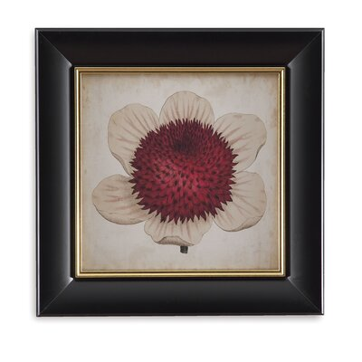 Pop Floral Iv Framed Painting Print
