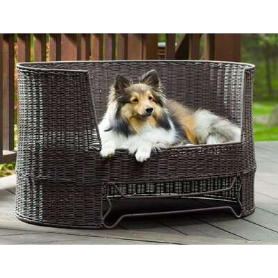 Dog Day Bed with Outdoor Cushion Size: Medium - 35.5 L x 23.5 W