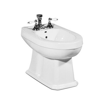 Richmond 16.75 Floor Mount Bidet Finish: White