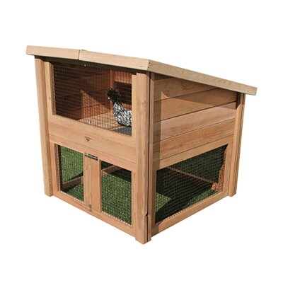 Darius Chicken Coop Pet Cottage