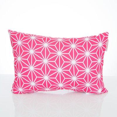 Twisted Kaleidoscope Outdoor Lumbar Pillow Color: Fuchsia