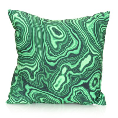 Malachite Outdoor Throw Pillow Size: 20 H x 20 W x 2 D, Color: Kelly Green