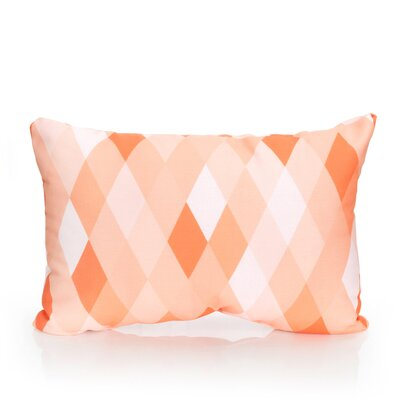 Harlequin Outdoor�Lumbar Pillow Color: Orange