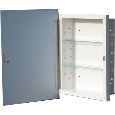 Reflection 16.19 x 22.25 Recessed Medicine Cabinet