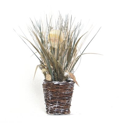 Seaside Seashell Grass Basket (Set of 6) EPG14774