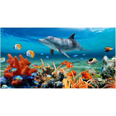 Dolphin Coral Reef Beach Towel