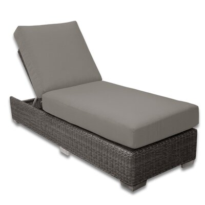Palisades Chaise Lounge Fabric Color: Graphite