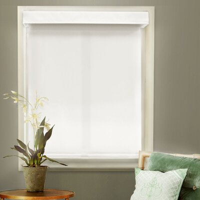 Mountain Room Darkening Roller Shade Size: 27W x 72L, Color: Mountain Snow