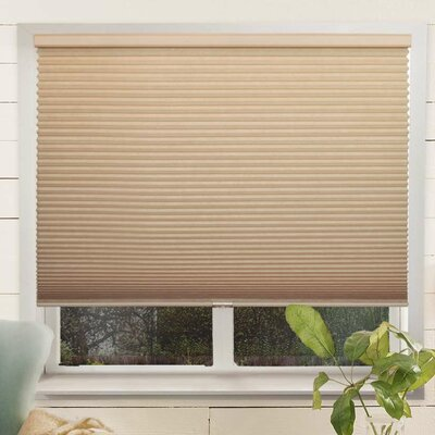 Louise Room Darkening Cellular Shade Color: Croissant/Beige, Size: 64 W x 64 L