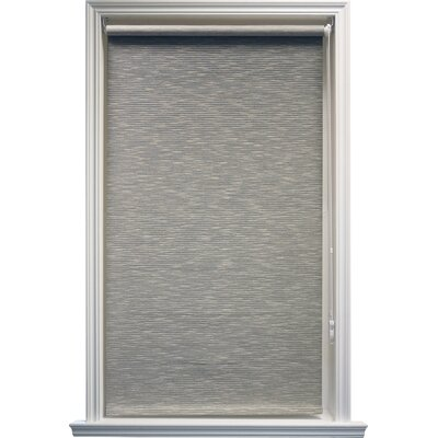 Coleman Continous Roller Shade Size: 23 W x 64 L, Color: Coal