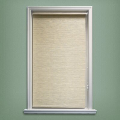 Coleman Continous Roller Shade Size: 27 W x 64 L, Color: Candyfloss Vanilla (Privacy & Natural Woven)