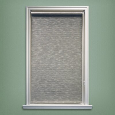 Coleman Continous Loop Privacy Roller Shade Size: 39 W x 64 L, Color: Coal