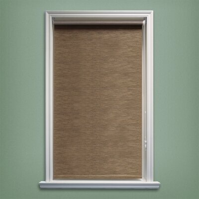 Coleman Continous Loop Privacy Roller Shade Size: 27 W x 64 L, Color: Latte