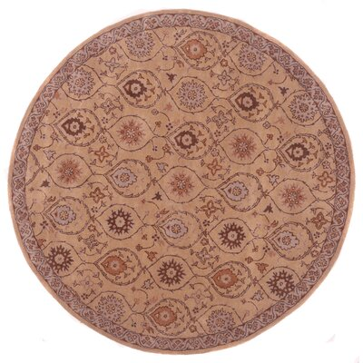 Tempest Hand-Tufted Bone Area Rug Rug Size: 36 x 56