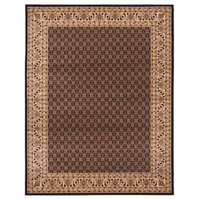 Brillante Black/Cream Area Rug Rug Size: 76 x 910