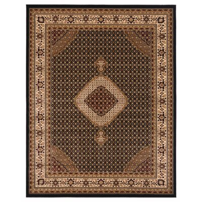 Brillante Ebony/Cream Area Rug Rug Size: 33 x 411