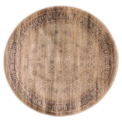Jas S. Brown Area Rug Rug Size: 33 x 411