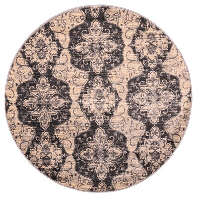 Island Cream/Black Area Rug Rug Size: 411 x 78