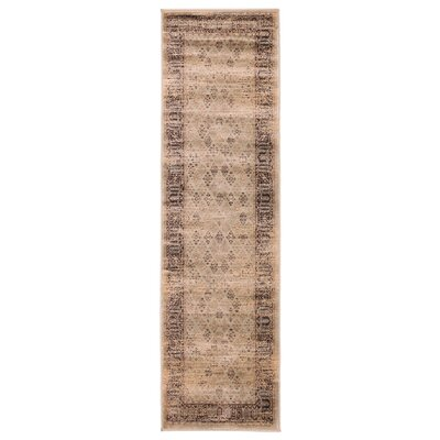 Jas S. Brown Area Rug Rug Size: Runner 23 x 76