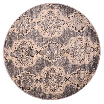 Island Light Gray/Cream Area Rug Rug Size: 411 x 78