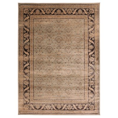 Jas Brown/Black Area Rug Rug Size: 76 x 910