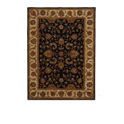 Tempest Black/Gold Area Rug Rug Size: 8 x 11