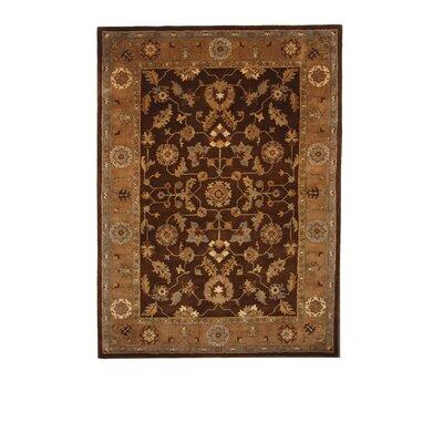 Tempest Dark Brown/Light Brown Area  Rug Rug Size: 8 x 11