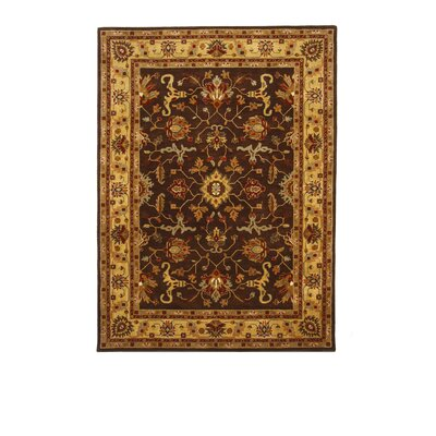 Tempest Cola/Red Area Rug Rug Size: 8 x 11