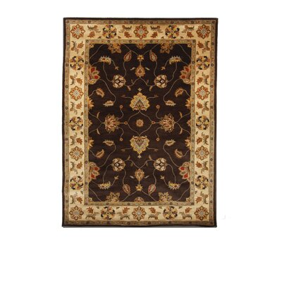 Tempest Cola/Ivory Area Rug Rug Size: 8 x 11