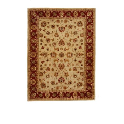 Tempest Ivory/Red Area Rug Rug Size: 8 x 11