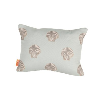 Coastal Scallop Indoor/Outdoor Boudoir/Breakfast Pillow Color: Blue