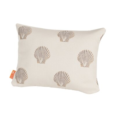 Coastal Scallop Indoor/Outdoor Boudoir/Breakfast Pillow Color: Sand
